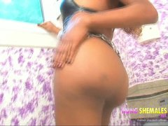 Preview 1 of Hot Hung Latina Shemale Sittng On Cock
